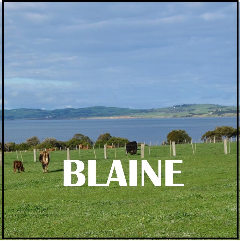 blaine1